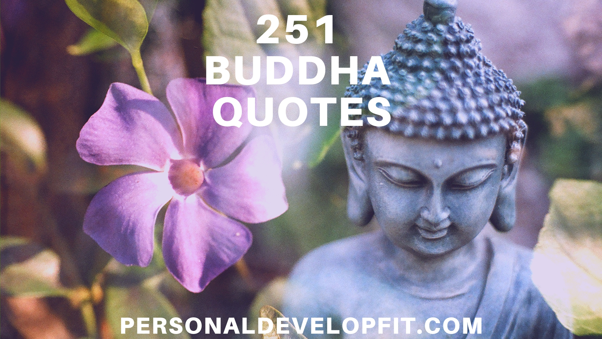 3182 Best Buddha Quotes Images Buddhism Spirituality Buddha Quote