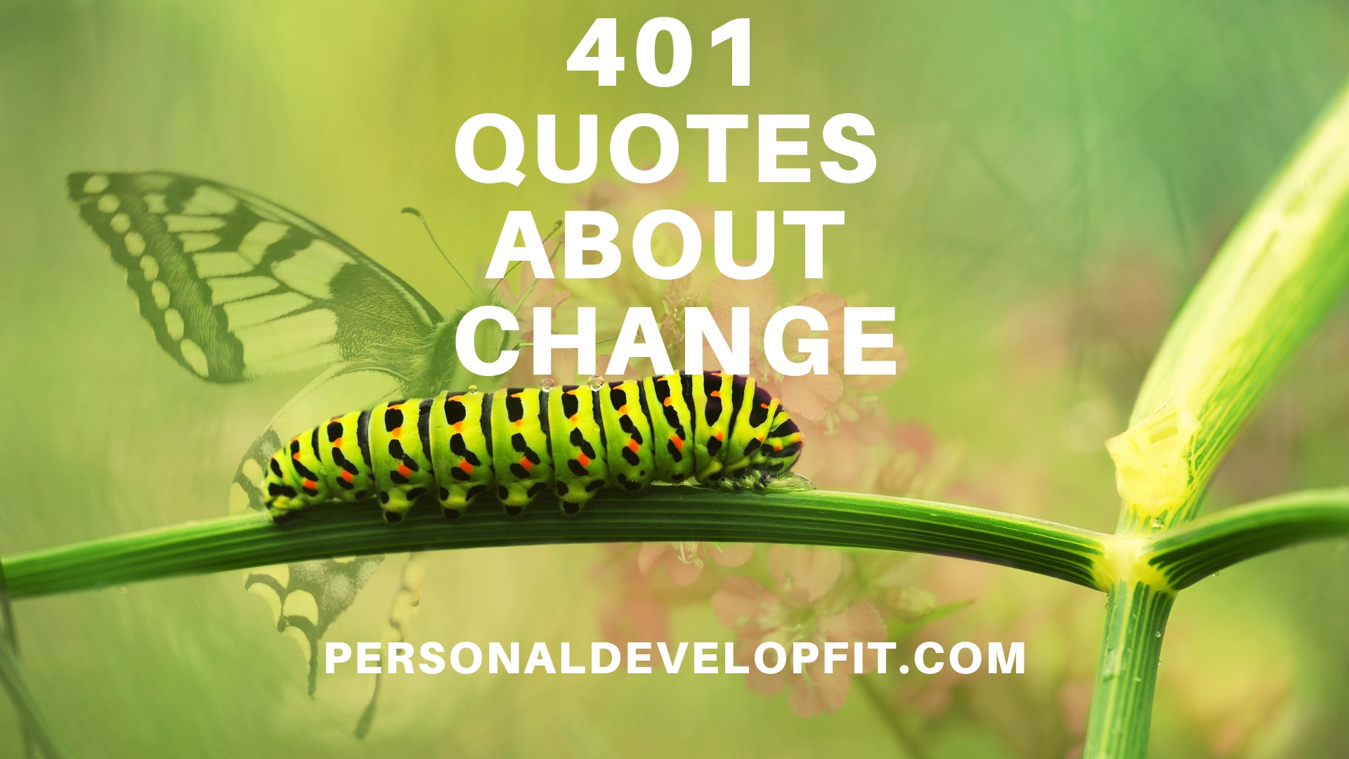 401 Quotes About Change The Ultimate List
