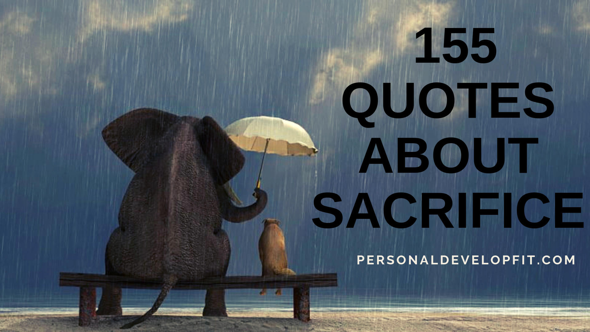 quotes about sacrifice a collection of the best